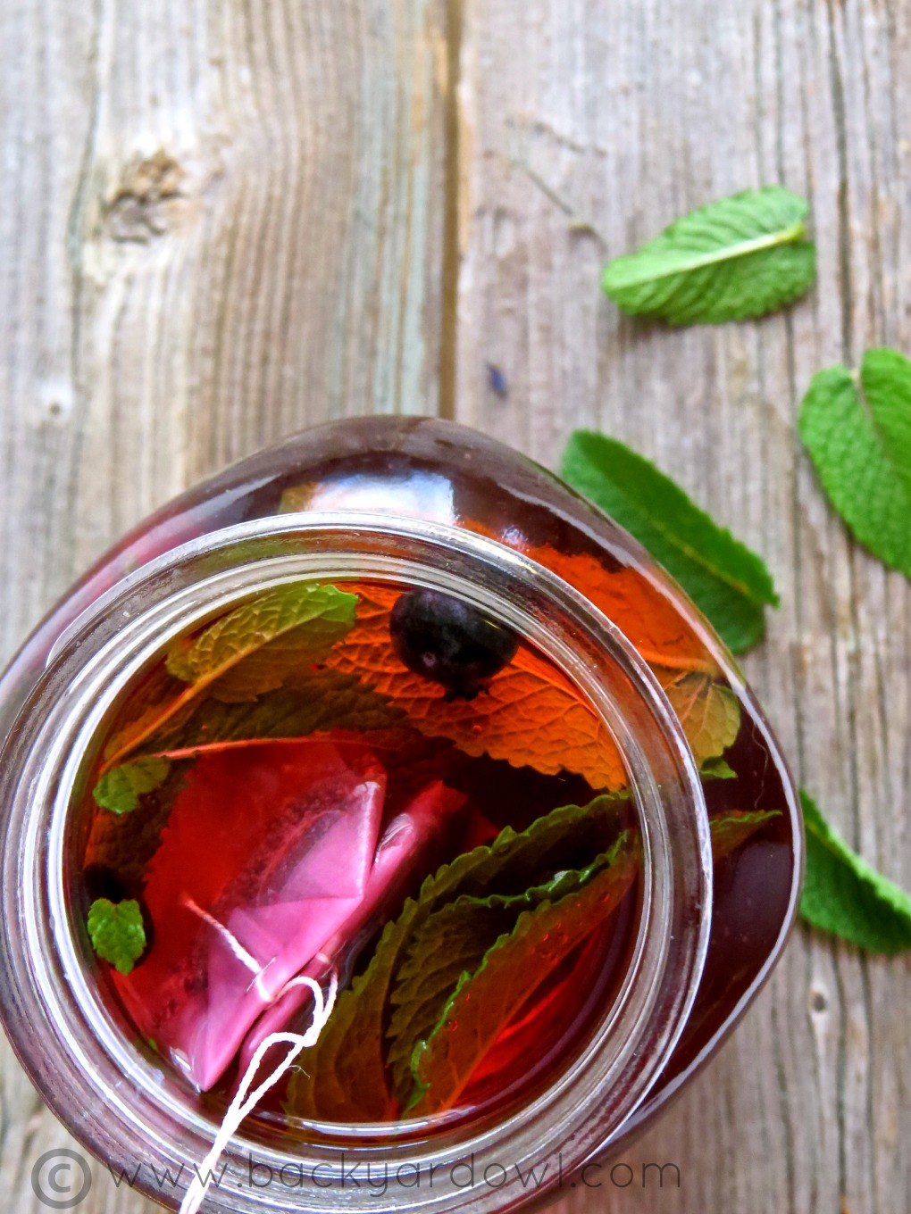 Simple and Refreshing Iced Herbal Tea with Fruit and Mint Leaves