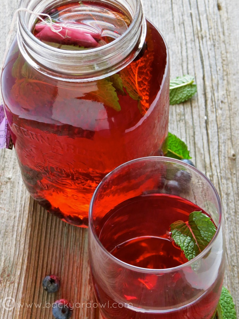 easy iced herbal tea with fruit and mint