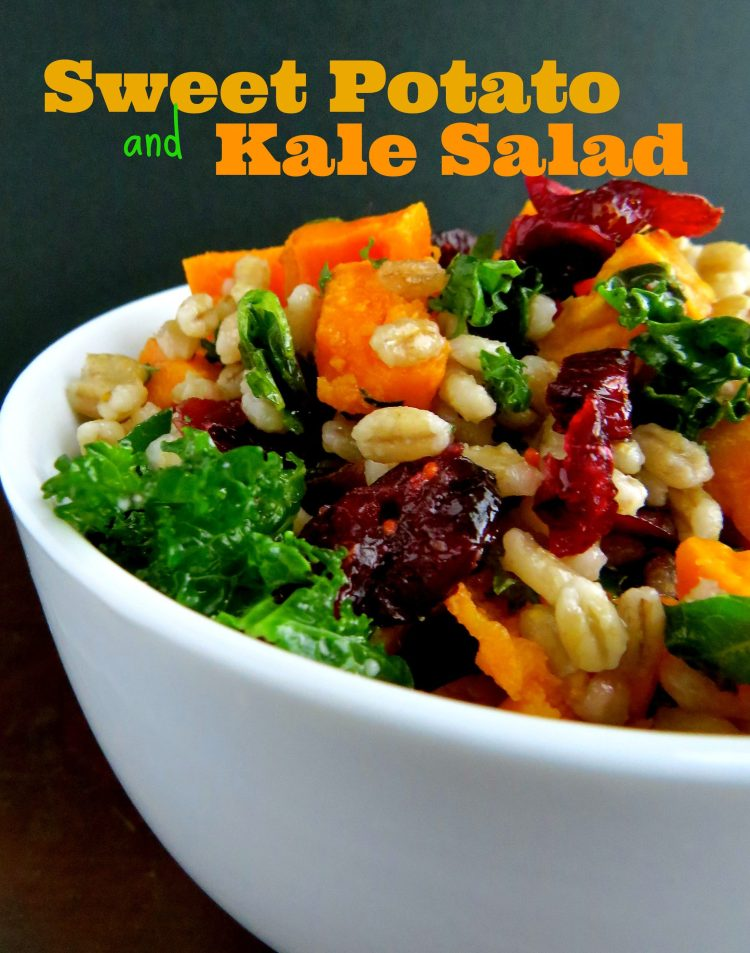 sweet potato and kale salad with barley and dried cranberries