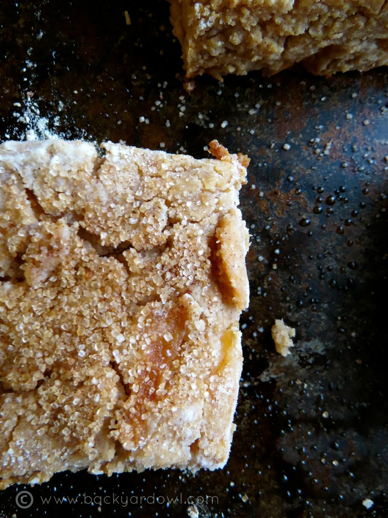 apple cider scones - vegan and gluten free