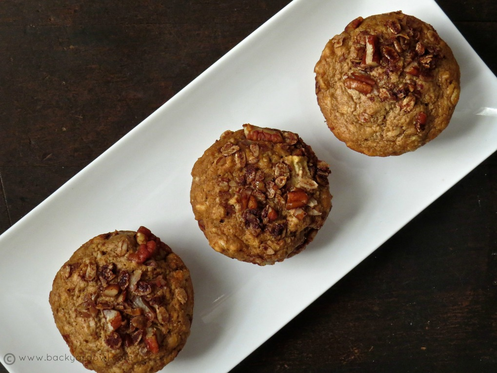 apple cinnamon muffins with pecan oat streusel
