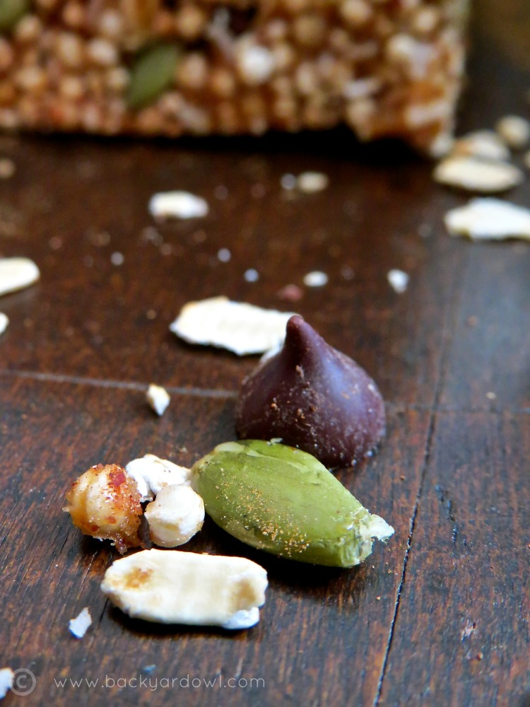 no bake seedy granola bars with pumpkin seeds, dark chocolate and raisins