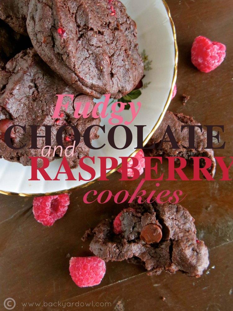 dark chocolate and raspberry cookies - vegan, gluten free