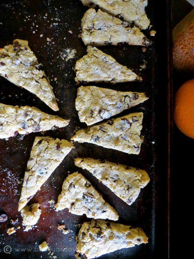 orange, cranberry, and dark chocolate scones