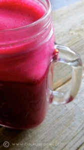 fortifying fall juice with beets