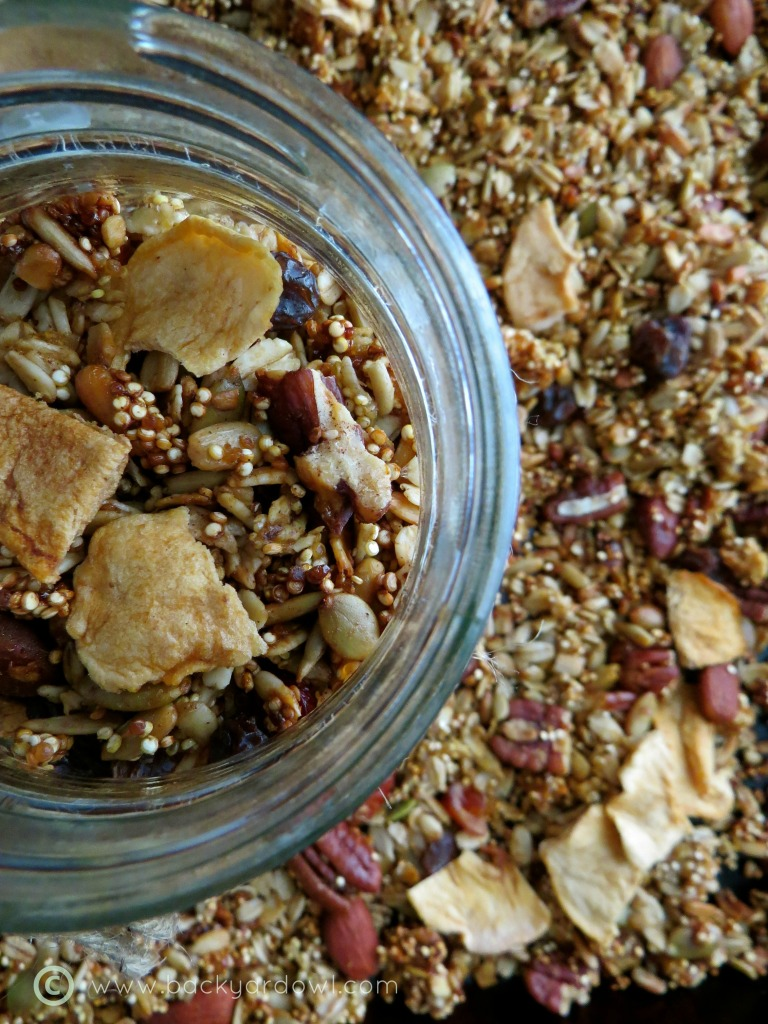 apple cider quinoa granola