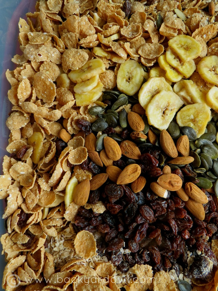 homemade muesli with rolled oats and banana chips