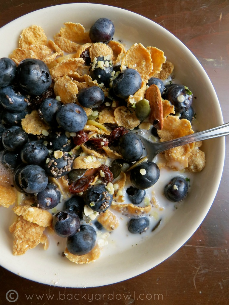 homemade muesli with blueberries