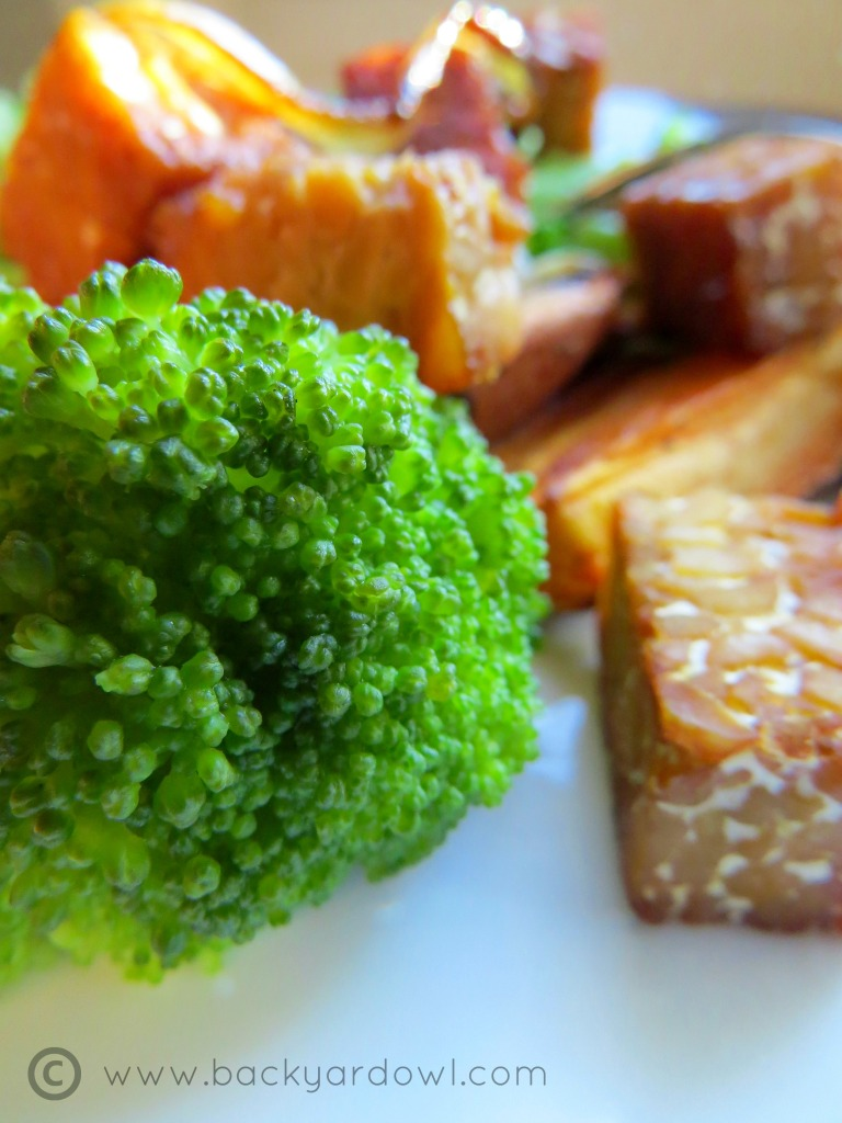 sweet-potatoes and broccoli with teriyaki tempeh