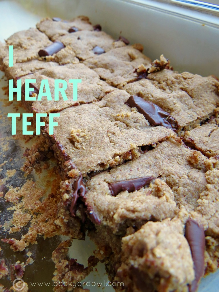 chocolate chunk nut butter blondies with teff flour