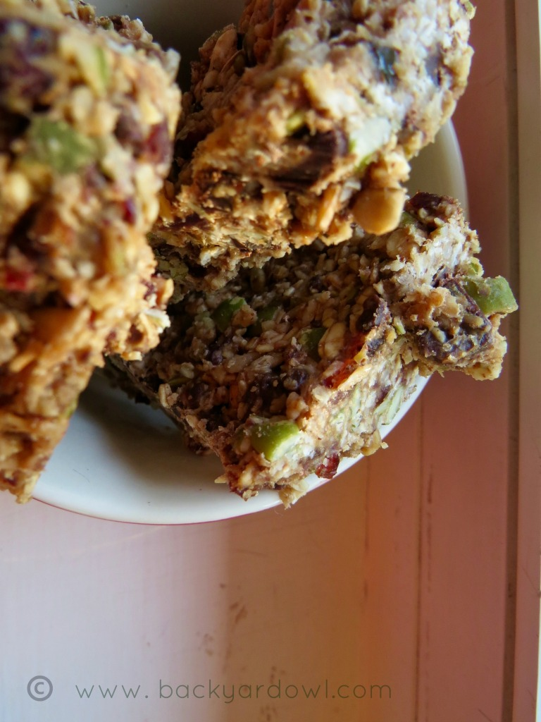 no bake granola bars with pumpkin seeds