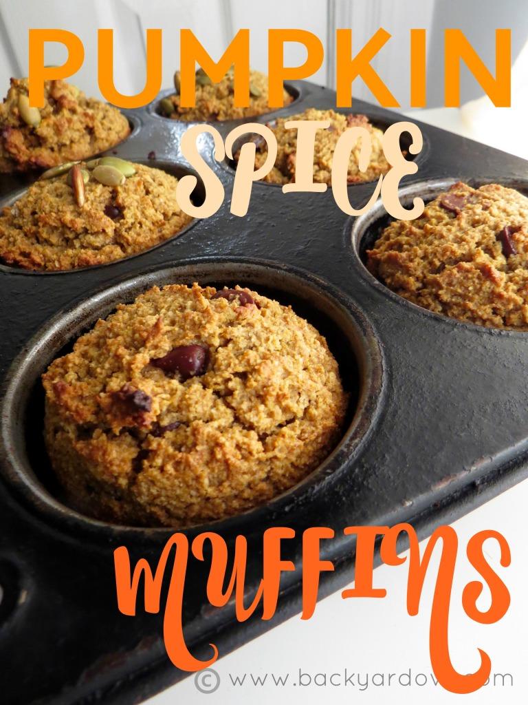 pumpkin spice muffins 1